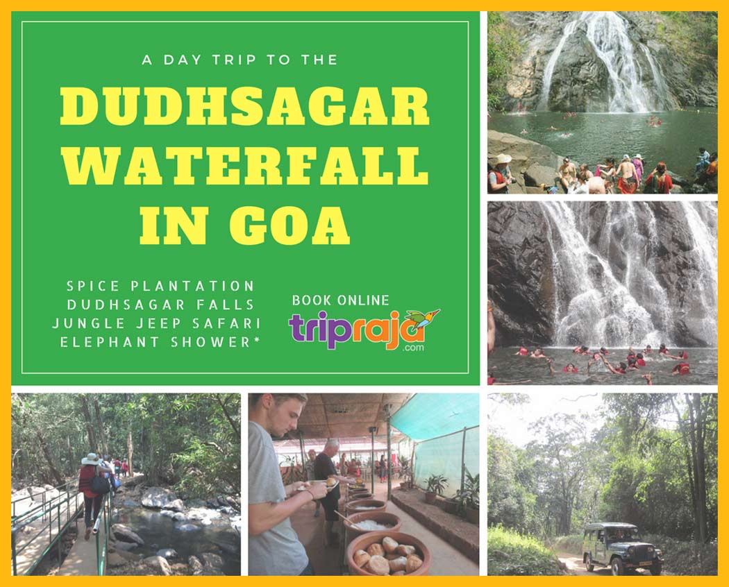 Dudhsgar-Falls-Jeep-Tour-Package