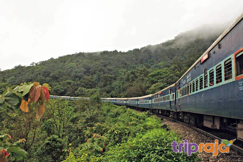 goa to dudhsagar train timings - trip