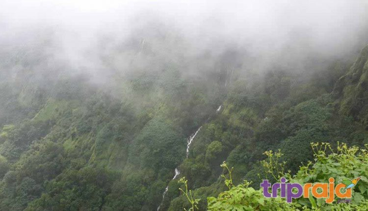 amazing amboli ghat Waterfalls
