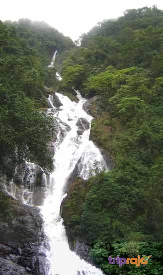 Tambdi-Surla-Waterfall