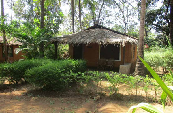 Nature Nest Jungle Cottages - Goa - Nature Nest Resort