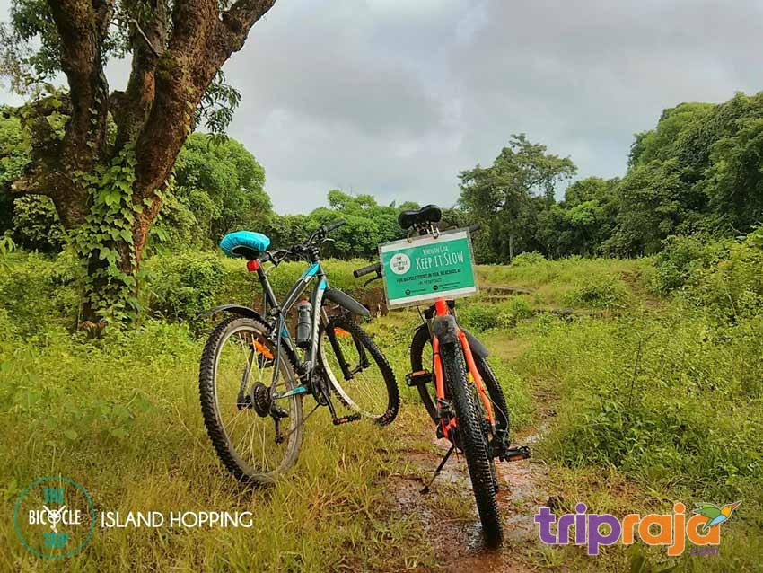 Exploring-Goa-on-Bicycling-Tour-by-tripraja