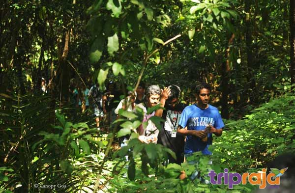 Trek to Tambdi Surla Waterfall
