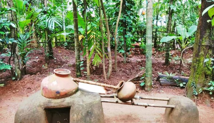Spice-Plantation-Goa