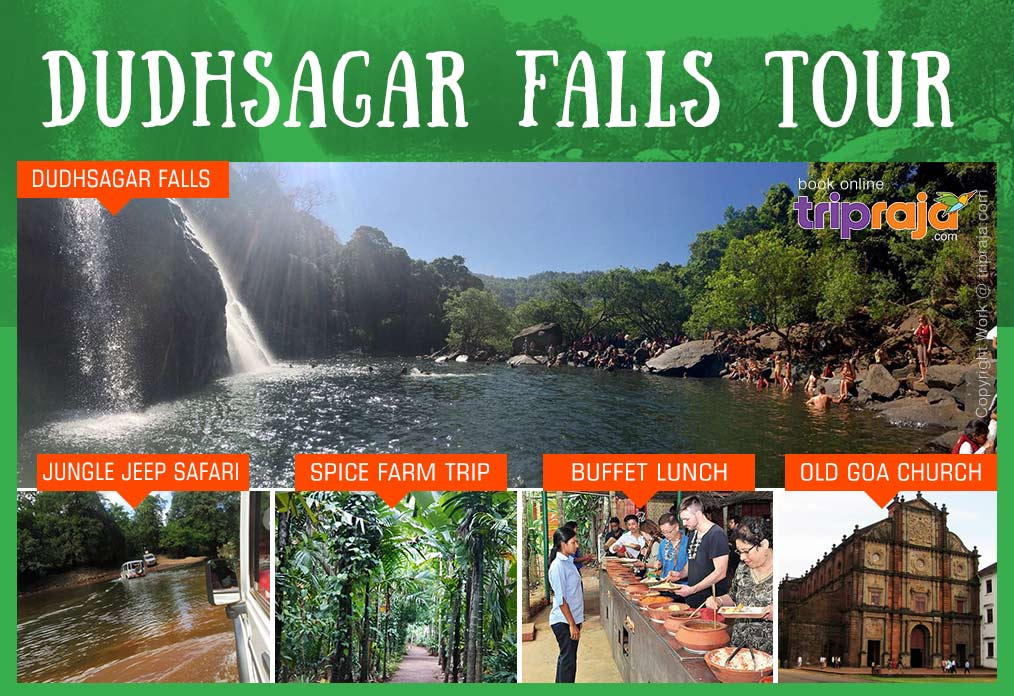 dudhsagar-waterfalls-tour-packages