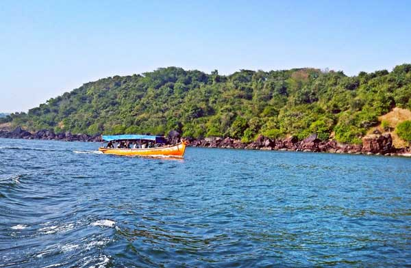 Bat Island Boat Tour with Dolphin Sighting And Snorkeling