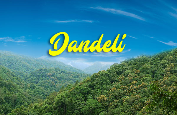 dandeli tour packages