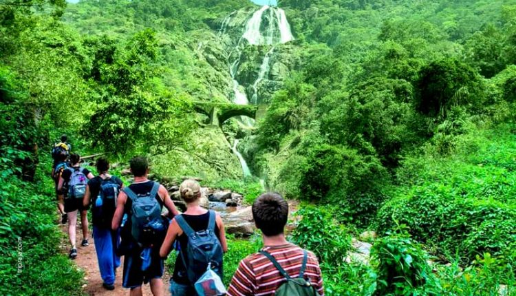 Trek-to-dudhsagar-falls